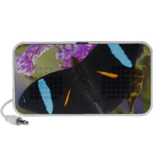 Sammamish, Washington Tropical Butterfly PC Speakers