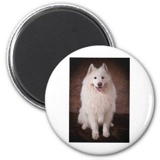 Samoyd 6 Cm Round Magnet