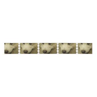 samoyed-5 grosgrain ribbon