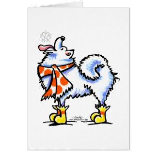 Samoyed American Eskimo Dog Snowflake Cards