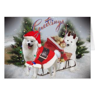 Samoyed Christmas Greetings Cards
