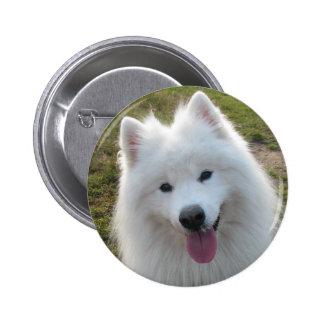 Samoyed dog beautiful photo button pin