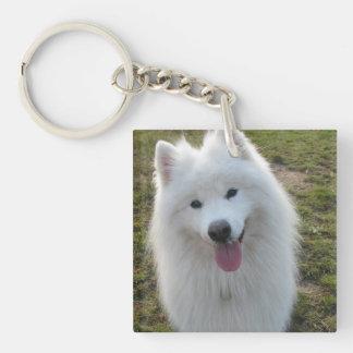 Samoyed dog beautiful photo gift acrylic key chain