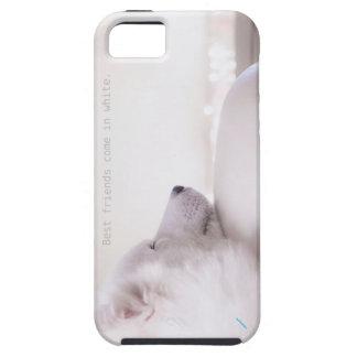Samoyed dog,  iPhone 5/5s Case