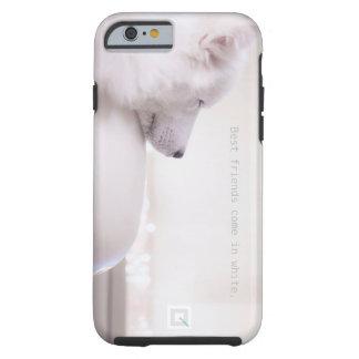 Samoyed dog,  iPhone 6/6s Case