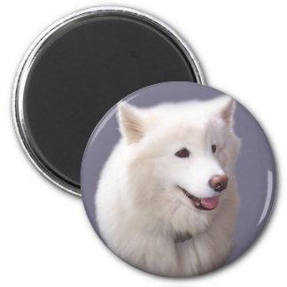 Samoyed 6 Cm Round Magnet