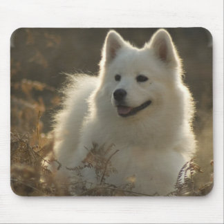 Samoyed Mouse Pad