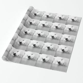 Samoyed Photo Dog White Wrapping Paper