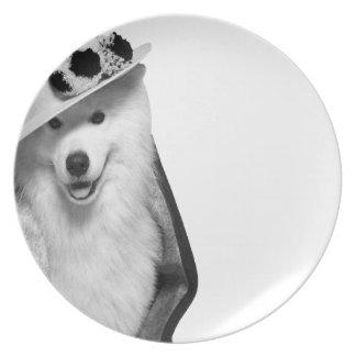 Samoyed Punt Plates