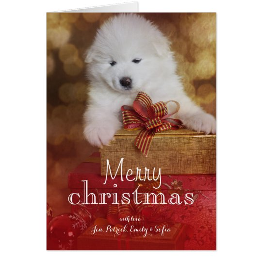 Samoyed Puppy Dog With Christmas Gifts Card