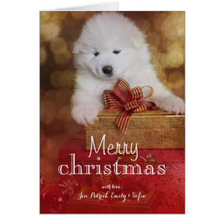 Samoyed Puppy Dog With Christmas Gifts Greeting Card