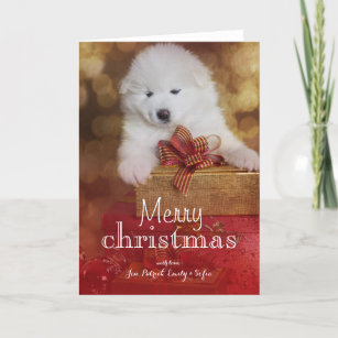 Samoyed Puppy Dog With Christmas Gifts Holiday Card