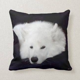 Samoyed Throw Pillow:Choice of Material, Colour Cushion