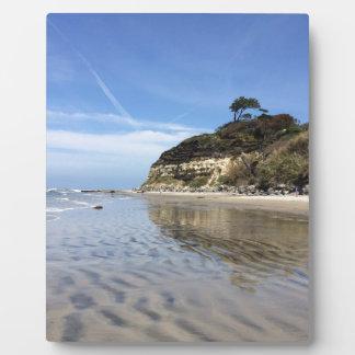 San Diego beach Plaque