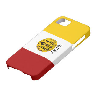 San Diego Flag Case For The iPhone 5