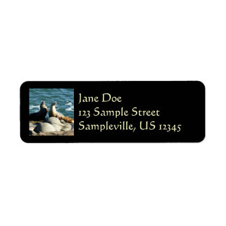 San Diego Sea Lions Return Address Label