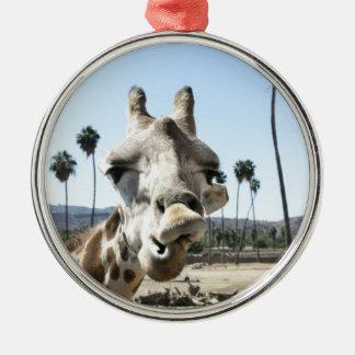 San Diego zoo Christmas Ornament