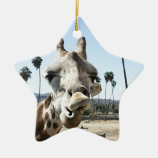 San Diego zoo Christmas Ornament