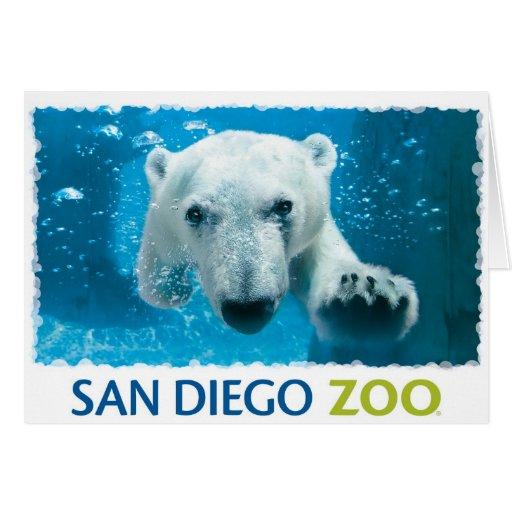 San Diego Zoo Polar Bear Greeting Card