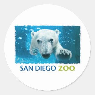 San Diego Zoo Polar Bear Round Sticker