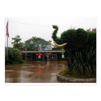 San Diego Zoo Postcard