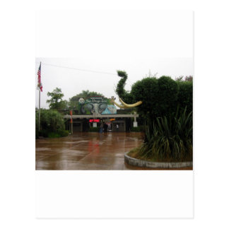 San Diego Zoo Post Card