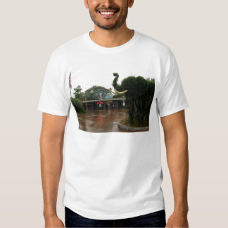 San Diego Zoo T-shirts