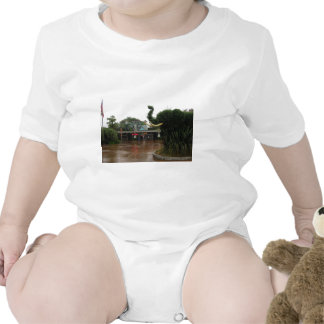 San Diego Zoo Baby Bodysuit