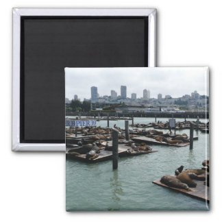 San Francisco and Pier 39 Sea Lions City Skyline Magnet