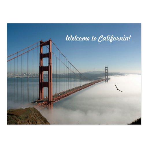 San Francisco Golden Gate Postcard