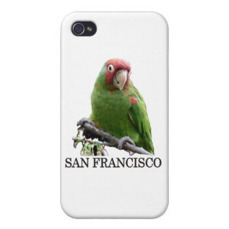 San Francisco Wild Parrot #7 iPhone 4/4S Covers
