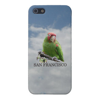 San Francisco Wild Parrot #7 iPhone 5 Cases