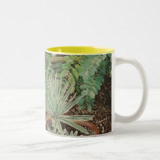 San Jose Mission Garden Painting Two-Tone Coffee Mug