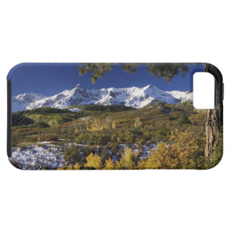 San Juan Mountains and Aspen trees in fallcolor iPhone 5 Cover