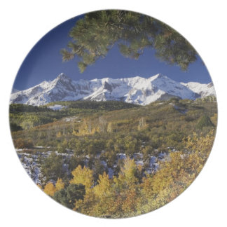 San Juan Mountains and Aspen trees in fallcolor Plate