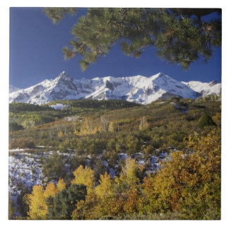 San Juan Mountains and Aspen trees in fallcolor Tile