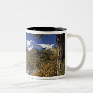 San Juan Mountains and Aspen trees in fallcolor Two-Tone Coffee Mug
