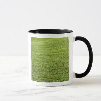 San Juan, Puerto Rico - Green grass is Mug
