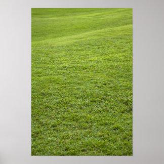 San Juan, Puerto Rico - Green grass is Poster