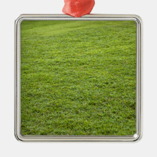 San Juan, Puerto Rico - Green grass is Silver-Colored Square Decoration