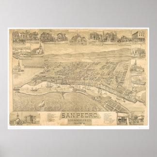 San Pedro, CA. Panoramic Map 1895 (1319A) Poster