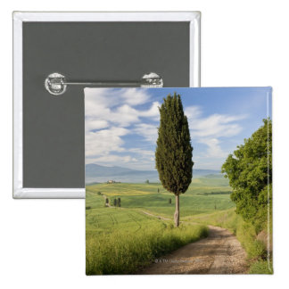 San Quirico d'orcia, Val d'orcia, Tuscany, Italy 15 Cm Square Badge