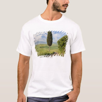 San Quirico d'orcia, Val d'orcia, Tuscany, Italy T-Shirt