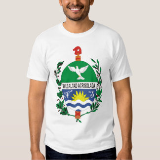 Sancti Spiritu T-shirt