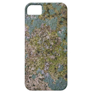 Sanctuary - iPhone 5 - Barely There Case