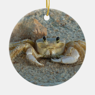 Sand Crab Christmas Ornament