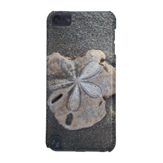 Sand dollar on sand iPod touch 5G case