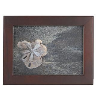 Sand dollar on sand keepsake box