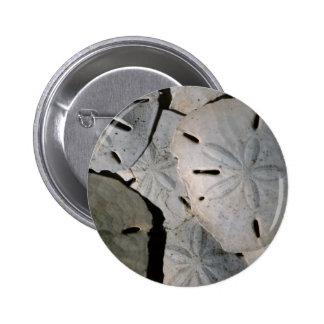Sand dollar pile 6 cm round badge