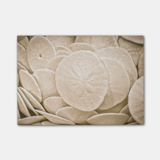Sand Dollar Post-it Notes